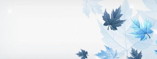 高清横幅素材:枫叶背景
